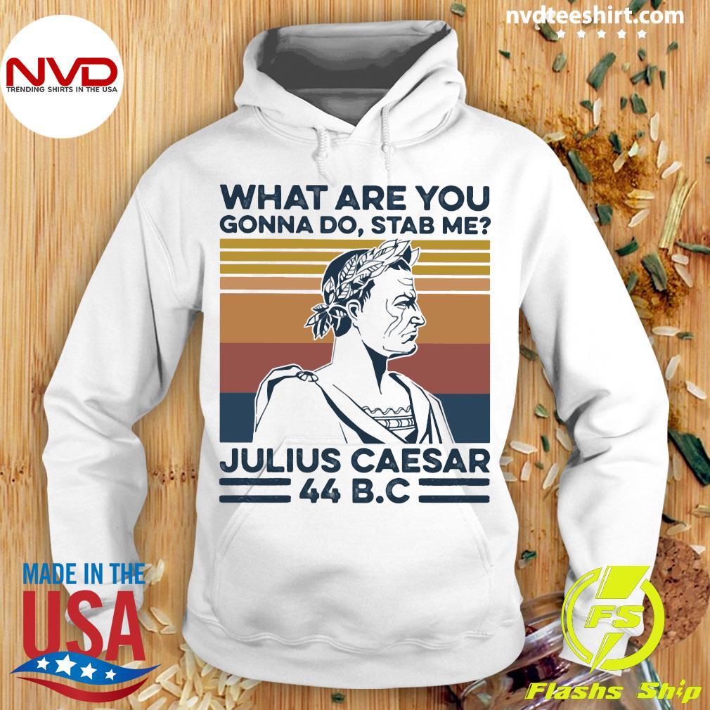 Vintage Retro What Are You Gonna Do Stab Me Julius Caesar 44 B.C Shirt Hoodie