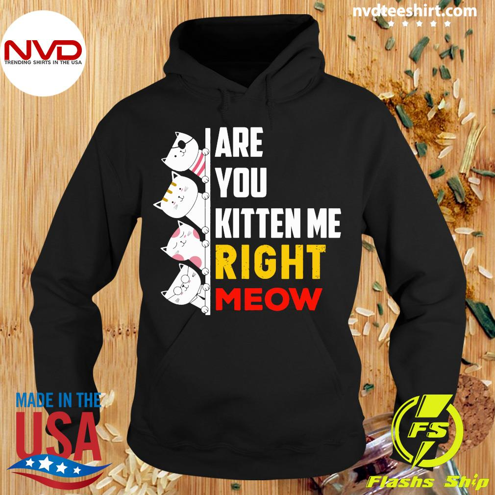 Funny Cats Are You Kitten Me Right Meow T-s Hoodie