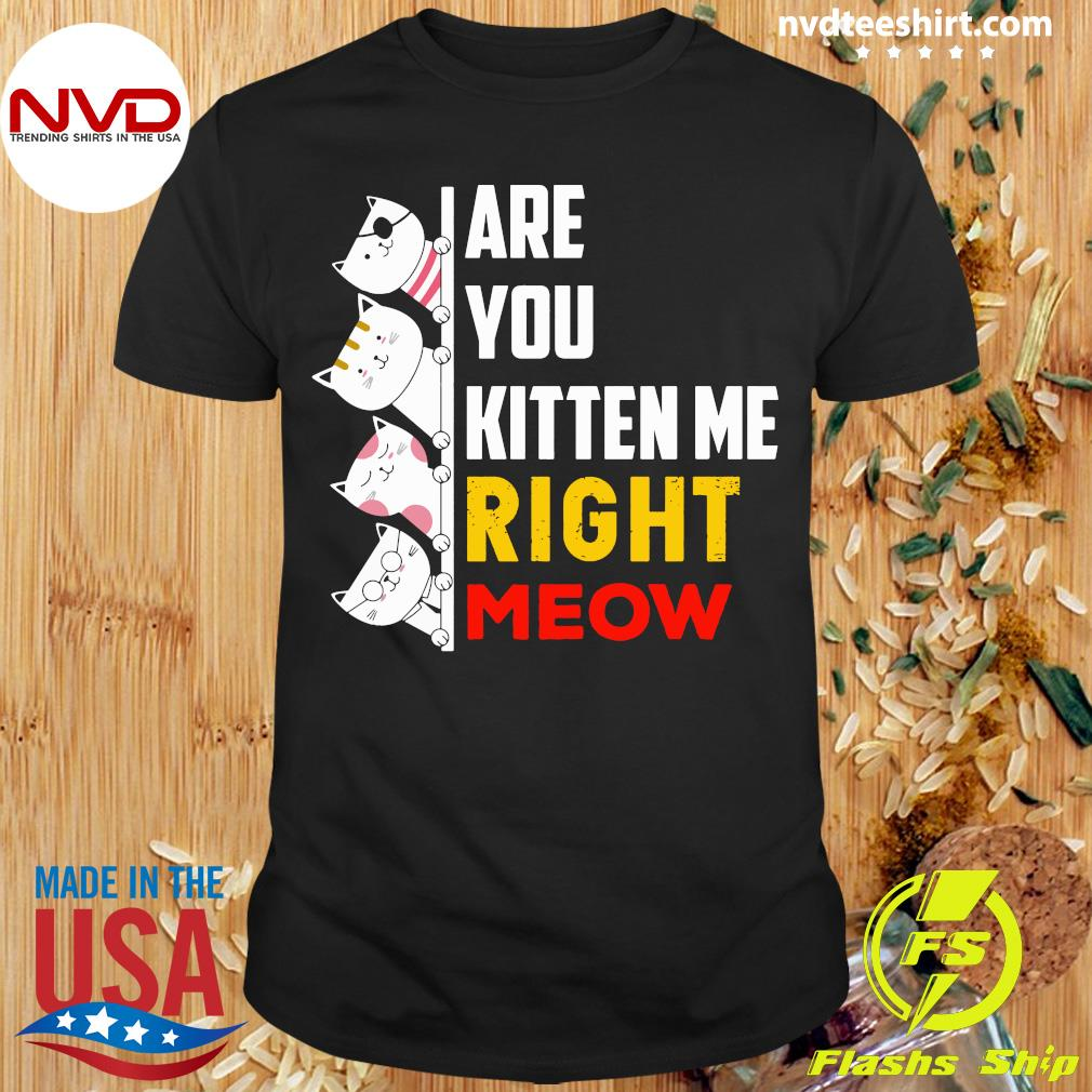 Funny Cats Are You Kitten Me Right Meow T-shirt
